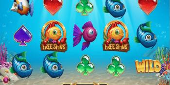 Der Golden Fish Tank Spielautomat im CherryCasino