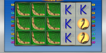 Der Spielautomat Kangaroo Island im Sunmaker Casino
