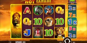 Hot Safari von Pragmatic Play