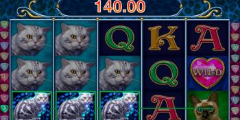 Diamond Cats von Amatic